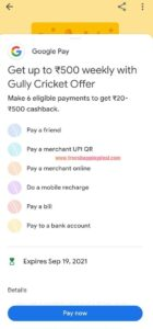Google Pay Gully Cricket Offer 02